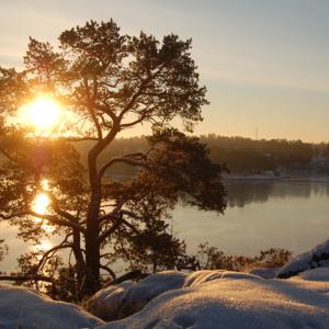 Vinter sol Djurönäset