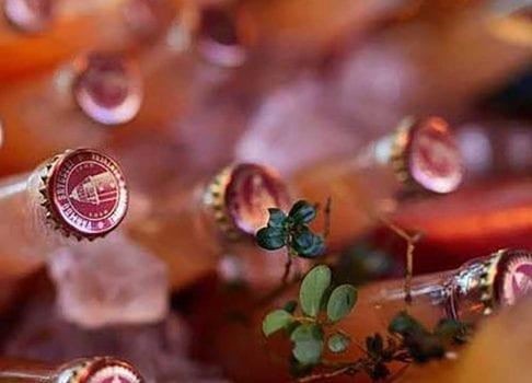 Djurönäset och Värmdö Bryggeri in till enBeermaker's dinnermed tillhörande ölprovning