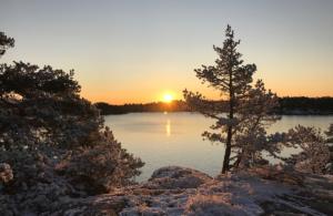 Vinter Djurönäset